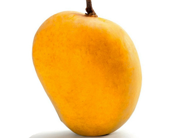 buy-ratnagiri alphonso mango